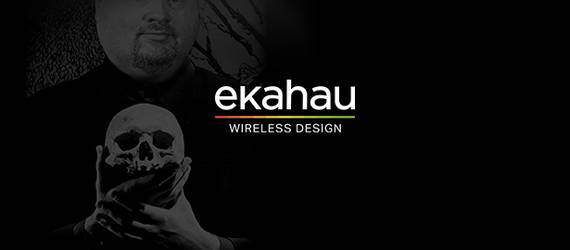 LigoWave at Ekahau Webinar